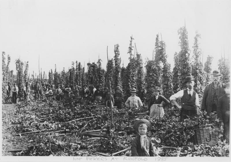 Уборка урожая хмеля в Кенте, 1875